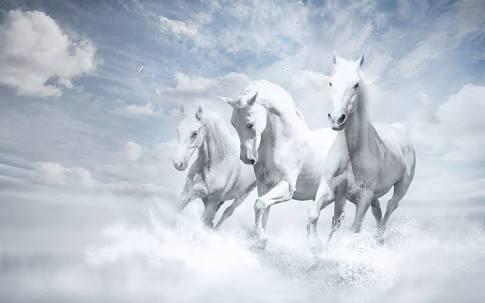Running Horses - Cover