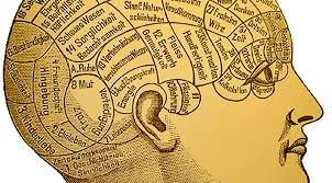 psychology anthropology and a science of human beings  the  phrenologycropped