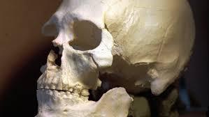 <b>Skull</b> sporting <b>sunglasses</b> on U.S. man's mantle identified as missing ...