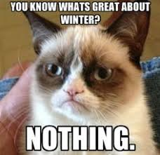 Winter? I hate it! on Pinterest | Winter, Snow Days and Snow via Relatably.com