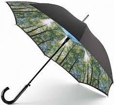 Купить женский зонт. Женские <b>зонты автоматы</b> и зонты-трости.