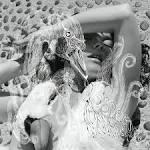 Vespertine album by Björk