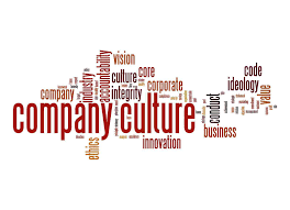 a large company vs  small company   essaycompany culture jpg