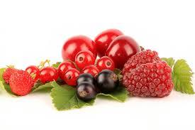 Výsledek obrázku pro RED FRUITS