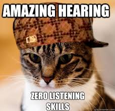 Amazing hearing Zero listening skills - Scumbag Cat - quickmeme via Relatably.com