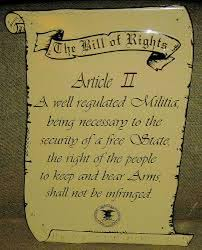 second amendment first ten amendments picture