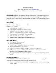 best resume font   cover letter resume cashier examplebest resume font the best and worst fonts to use on your rsum bloomberg nesreen