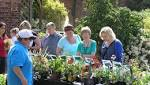 Wolverley's Bodenham Arboretum to host autumn plant fair