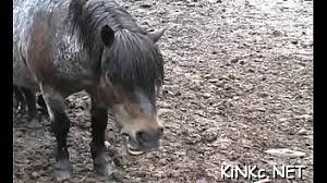 'horse-cock' Search - XNXX.COM