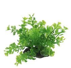 <b>Искусственное растение</b> ArtUniq Caryota <b>green</b> Кариота для ...