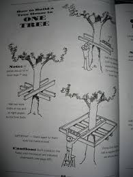 ideas about Tree House Designs on Pinterest   Tree Houses    How to plan a tree house
