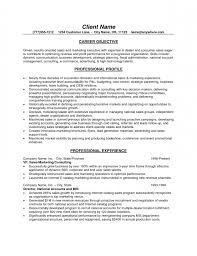 Sale Representative Resume Resume For Beer Sales Rep Name Sales     Brefash Example Example Of Healthcare Sales Resume Emmacapture Objective It Sales Resume Examples And Samples Sales Engineer
