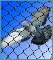 Fish Farm Catla, Bird Protection Nets, Coconut Safety Nets, Safety ...