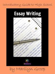 essay writing for reluctant high school writers  high school essay writing curriculum
