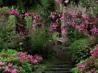 Самый популярных изображений на доске «все в сад»: 394 в ...