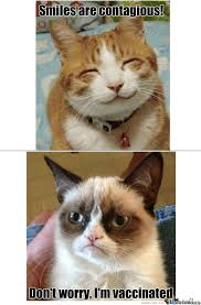 When Grumpy Cat And Smile Cat Meets by catalyxx - Meme Center via Relatably.com