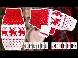 Как связать <b>свитер для собаки</b> своими руками.<b>Одежда для собак</b> ...
