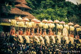 essay on indian festival photo essay and my top travel tips for tropical kerala   thrissur pooram festival   travel
