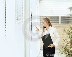 beautiful woman secretary with documents in bright office beautiful bright office