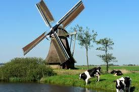 Afbeeldingsresultaat voor nederland