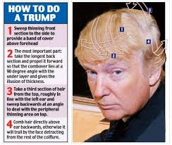 Image result for donald trumps hair