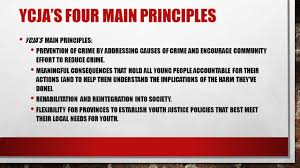 to what extent is the ycja fair and equitable in addressing youth to what extent is the ycja fair and equitable in addressing youth crime essay