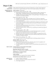 Ramp Agent Resume Sample   SinglePageResume com