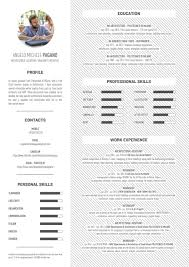 angelo michele pagano cv by angelo michele pagano issuu