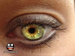 اجمل عيون بنات Images?q=tbn:ANd9GcQ29G1i4jog4SLfKvKVDJ7SKBPHhPXIp5N6d8JqXcj3e0FREJ1B