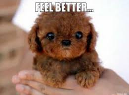 feel-better-thumb.jpg via Relatably.com