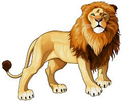 Image result for lion clip art