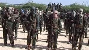 Image result for PICS OF BOKO HARAM MILITANTS IN BORNO, NIGERIA