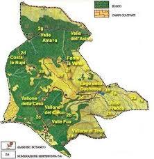 Carta tematica della flora e della vegetazione delle Montagne della