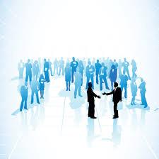 tauranga business networks tauranga chamber of commerce tauranga business networking