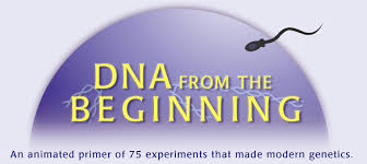 <b>DNA</b> from the Beginning - An animated primer of 75 experiments ...