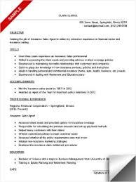 sample resume objectives for entry level  s        sample resume objectives for entry level  s