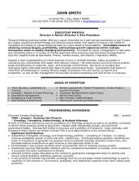 click here to download this business unit director resume template httpwww sample resume executive