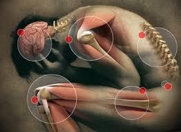 obat ampuh alami penyakit asam urat