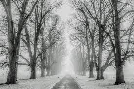 Why Some People <b>Dream</b> in Black and White | Psychreg