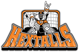 Image result for ron hextall  hockey