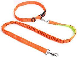 XIAOLANGTIAN Jogging Leash,Night <b>Reflective</b> Elastic <b>Orange</b> ...