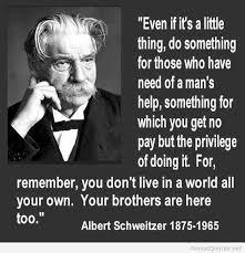 Albert Schweitzer Quote via Relatably.com