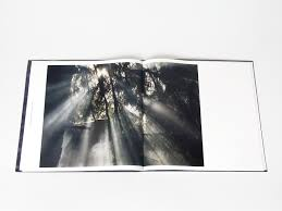 studio pino rogier asked us to design a book that will showcase this deeply intimate photo essay the book also carries the actual vinyl featuring four songs by vök