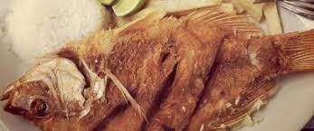 Image result for mojarra frita