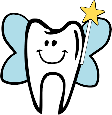 Image result for tooth