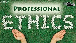 Image result for PROFESSIONAL ETHICS