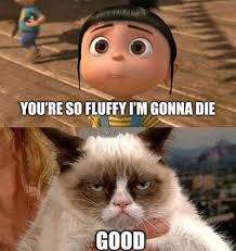 Despicable-Me-and-Grumpy-Cat.jpg via Relatably.com
