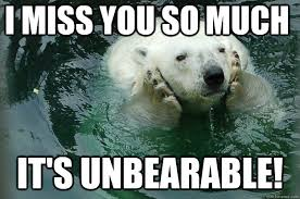 I miss you so much it's unbearable! - Worried Eco Bear - quickmeme via Relatably.com