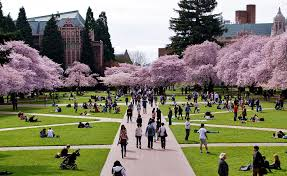 Image result for pictures of college campuses