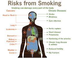 smoking information esl resources